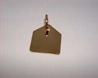 Dog paw ID tag Hous gold colour